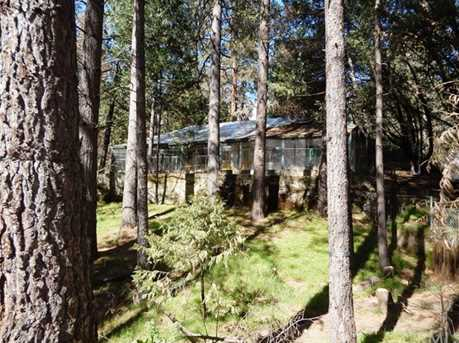 44839 Mountain Meadow Road - Photo 4