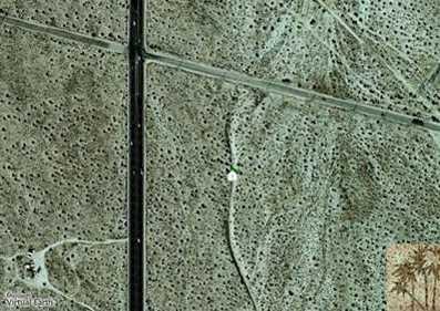 0 40 Acres Palm Drive - Photo 4