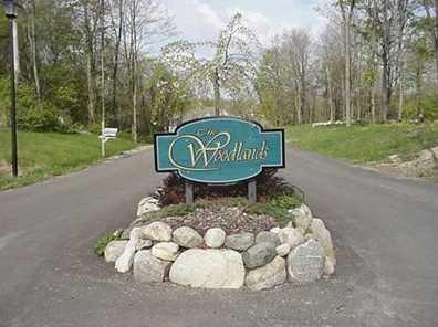 3463 Woodland Trail #3 - Photo 1