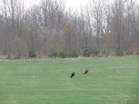 Meadow View - Photo 2