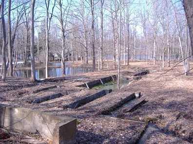 4517 Lake Chapin Rd - Photo 2