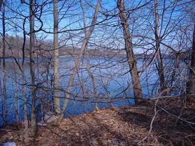 4517 Lake Chapin Rd - Photo 6