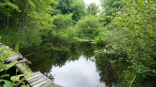 11647 Pomeroy Springs Road #Parcel A - Photo 1