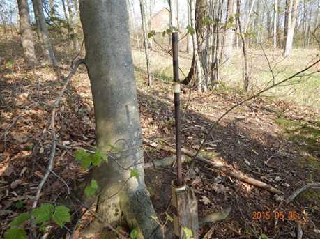 Elk Trail - Photo 30