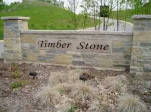 Lt91 Timber Stone Subdivision - Photo 1