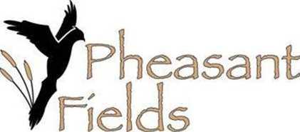 W297S8230  Pheasant Fields Dr - Photo 1