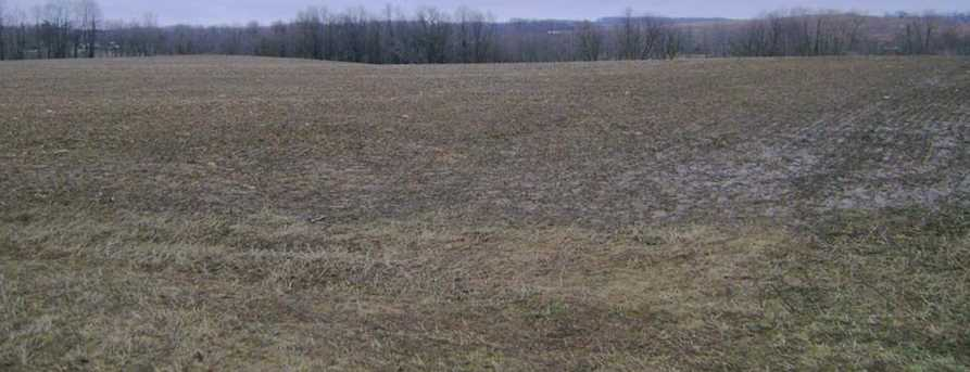 47.86 Acre  County Road W - Photo 1