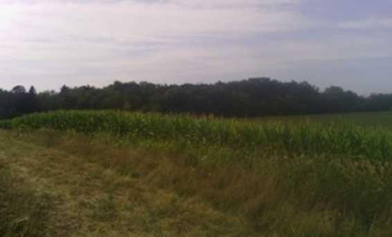 Lt3  County Line Rd #T3-065700C - Photo 1