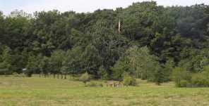 Lt2  114th Pl - Photo 1