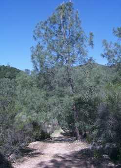 53660 Pine Canyon Rd - Photo 10