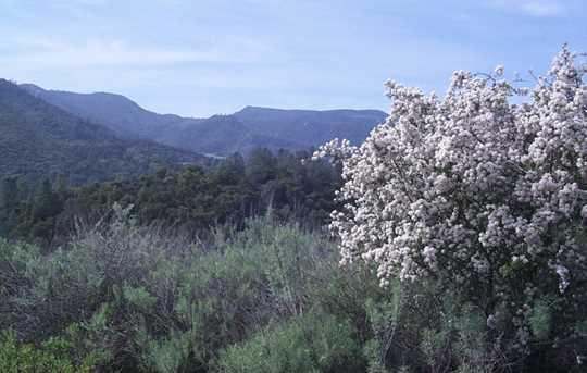 53660 Pine Canyon Rd - Photo 4