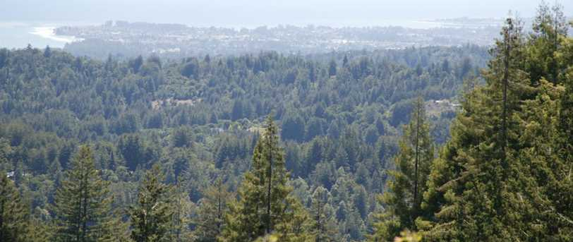 0000 Aptos View - Photo 20
