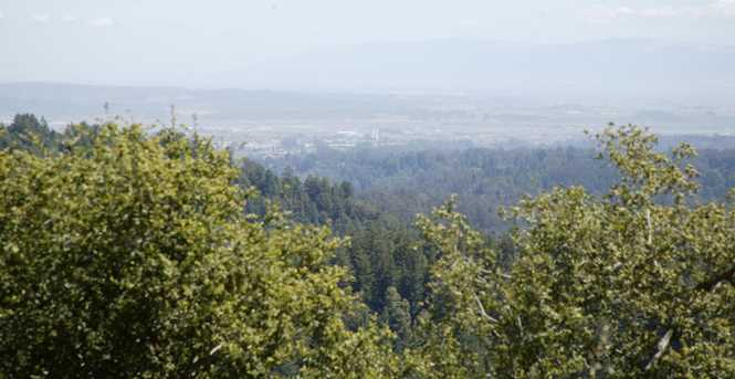 0000 Aptos View - Photo 6