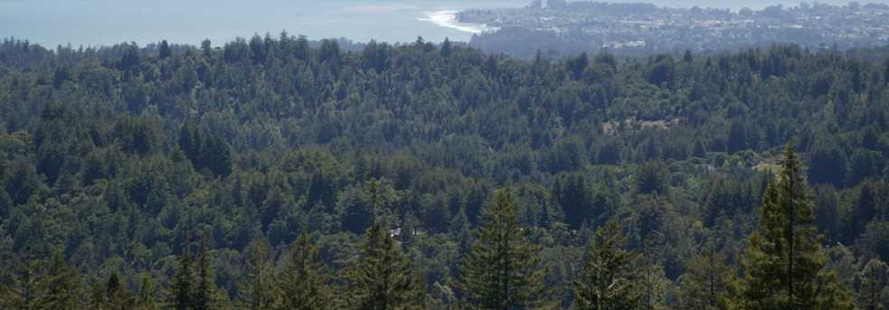 0000 Aptos View - Photo 18