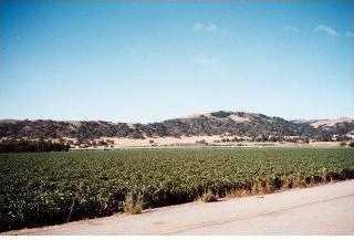 5015 Monterey Rd - Photo 6