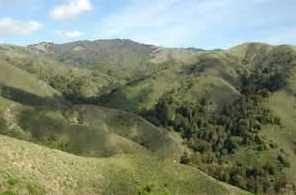 0 Garrapatos Redwoods Estates Trail 1 Lot 279 - Photo 1