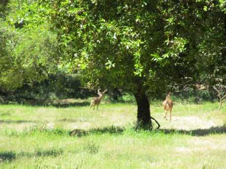 0 Woodpecker Ridge Rd - Photo 6