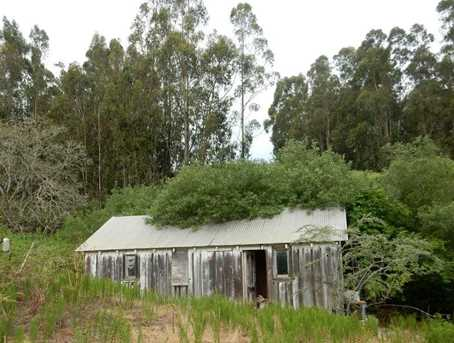 6090 Stage Rd - Photo 12