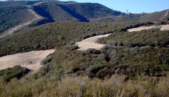 00 Pine Canyon - Photo 8