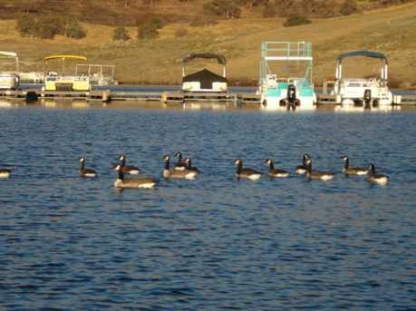 9832 Boat Club Dr 24 - Photo 20