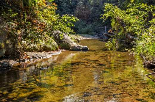 13546 Old Bear Creek Rd - Photo 26