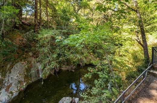 13546 Old Bear Creek Rd - Photo 16