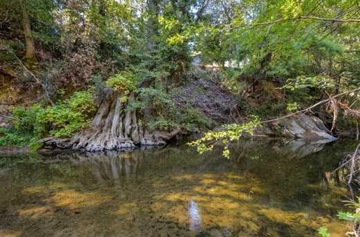13546 Old Bear Creek Rd - Photo 22