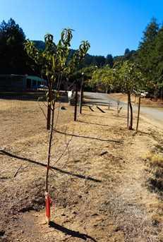 0 Redwood Retreat Rd - Photo 30