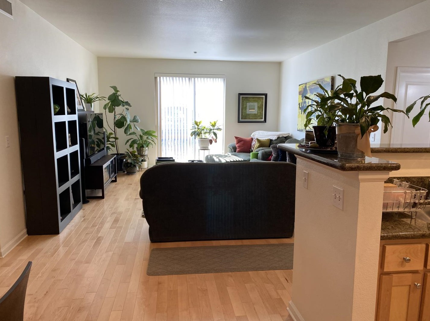 21 N 2nd St 305, Campbell, CA 95008