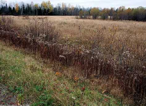 Lot 1 Moro Town Line Road - Photo 14