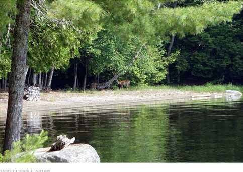 1/2 Of Lot 6 &amp Lots 7-14 Granite Mountain Shores - Boat Access Only - Photo 24