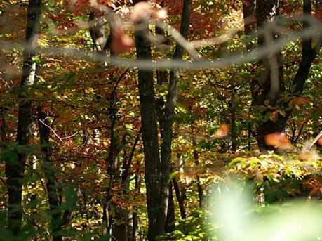 Falls Trail #65 - Photo 2
