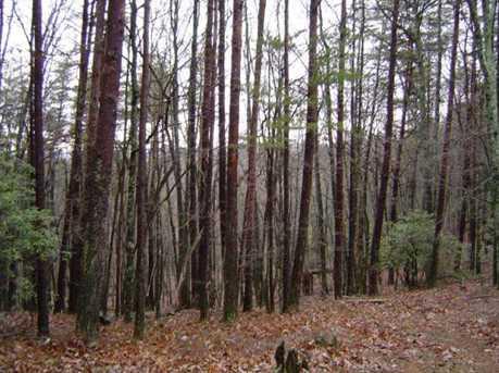 1211 Oglethorpe Mountain Court - Photo 2
