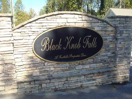 220 Black Knob Falls Drive #16 - Photo 2