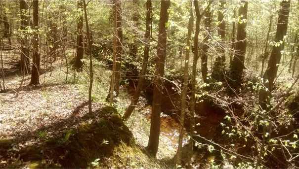 0 Shady Trail - Photo 12