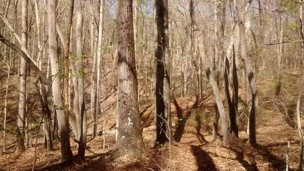 0 Shady Trail - Photo 10