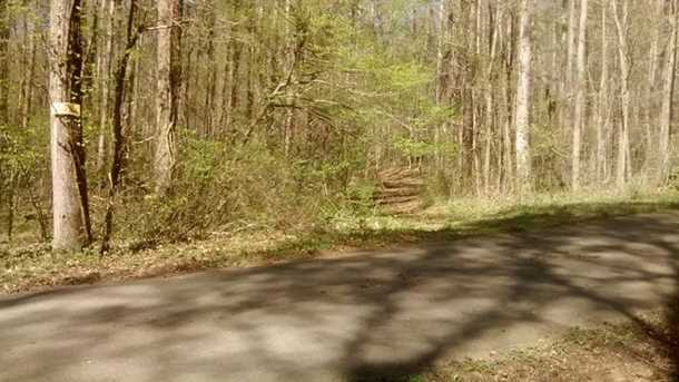 0 Shady Trail - Photo 4