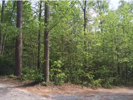 .44Ac Indian Forest Road #8 - Photo 1