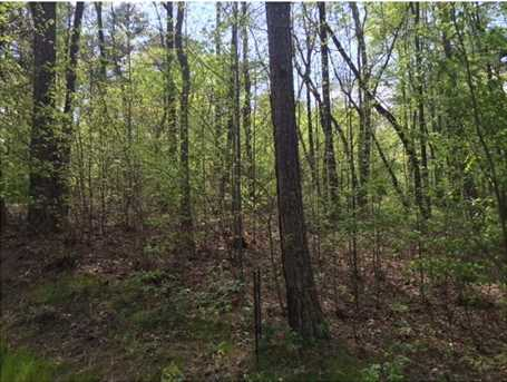 .44Ac Indian Forest Road #8 - Photo 4