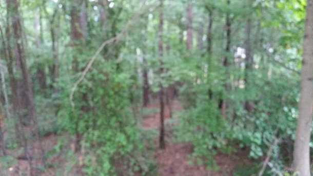 3565 Old Alabama Road #1.2 ac - Photo 8