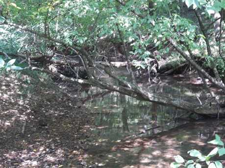 0 Etowah Trail - Photo 6