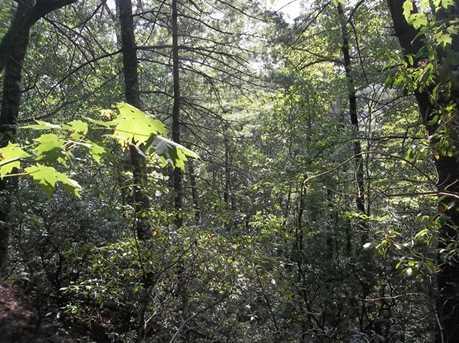 0 Etowah Trail - Photo 14