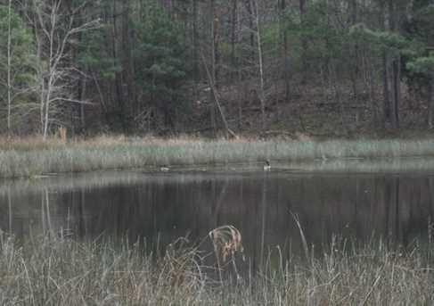 0 W Minish Lake Rd - Photo 22