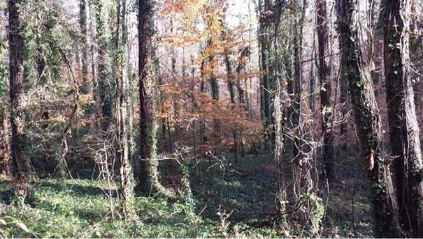 0 Sourwood Trail #10-19 - Photo 4