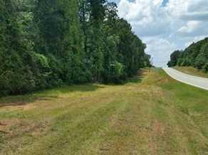 0 Georgia  83 Highway #7-8 - Photo 1