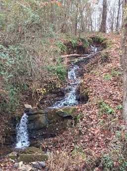 6550 Bridge Stream Road - Photo 20
