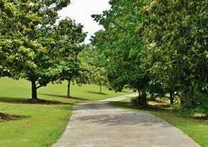6057 Walden Pond Road - Photo 8