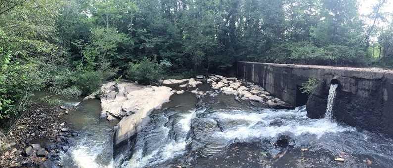 3174 Mill Springs Circle - Photo 38
