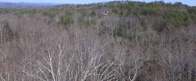 469 Blazingstar Trail #3576 - Photo 14