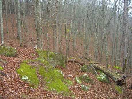 0 Maplewood Trail - Photo 28